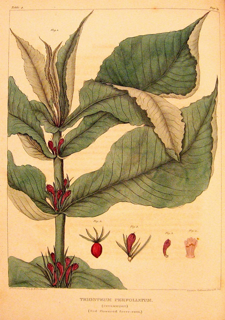 William, Barton. Vegetable Materia Medica of the United States. 1818-25
