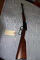 Rifle: Henry 22 Cailbre